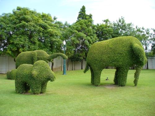 Metodo WAL - Giardinaggio e Bricoloage