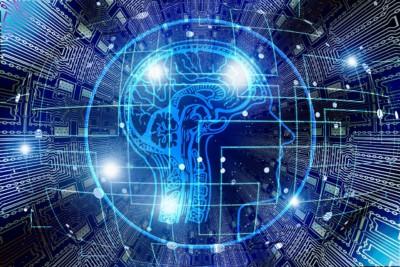 plasticita' neurale